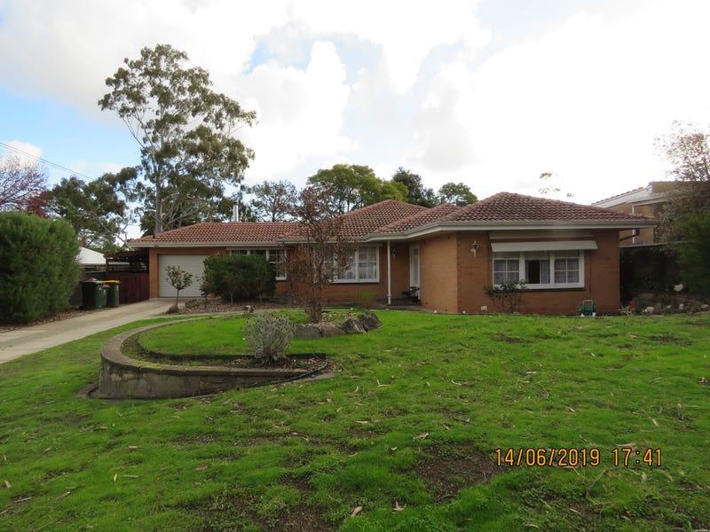 16 Linton Street, Banksia Park, SA 5091