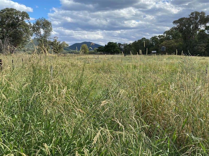 979 Kangarooby Road, Gooloogong, NSW 2805