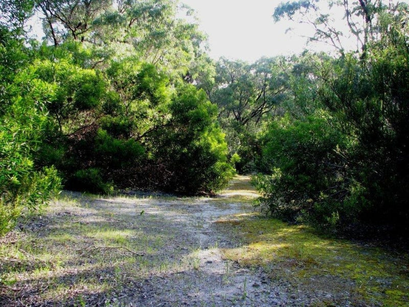 Lot 50, Gneiss Hill Road, Bremer Bay, WA 6338
