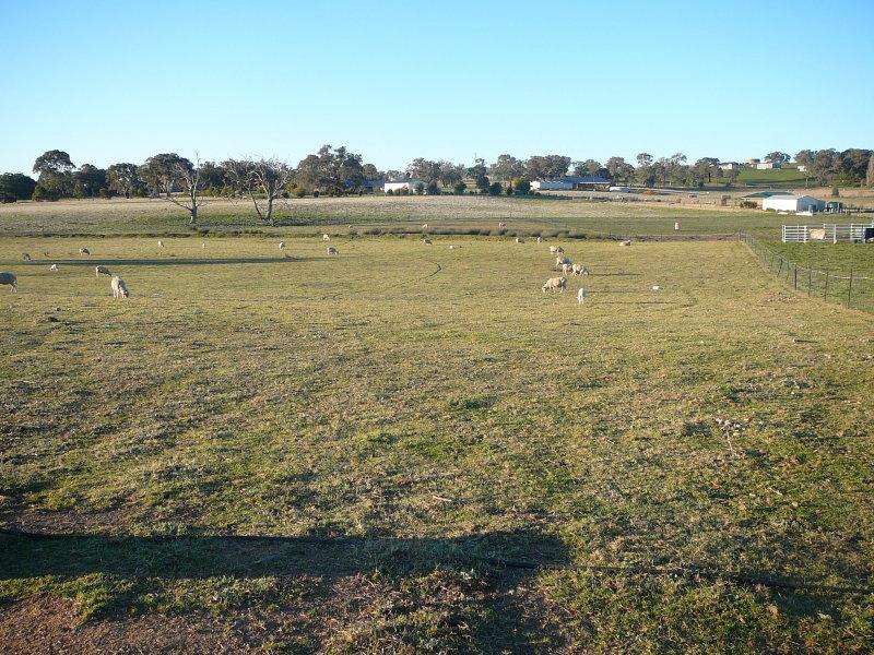Lot 4, 164-166 Farm Street, Boorowa, NSW 2586