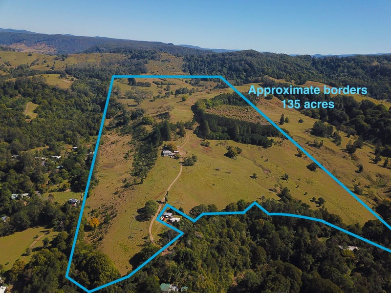 537 Tuntable Creek Road, Tuntable Creek, NSW 2480