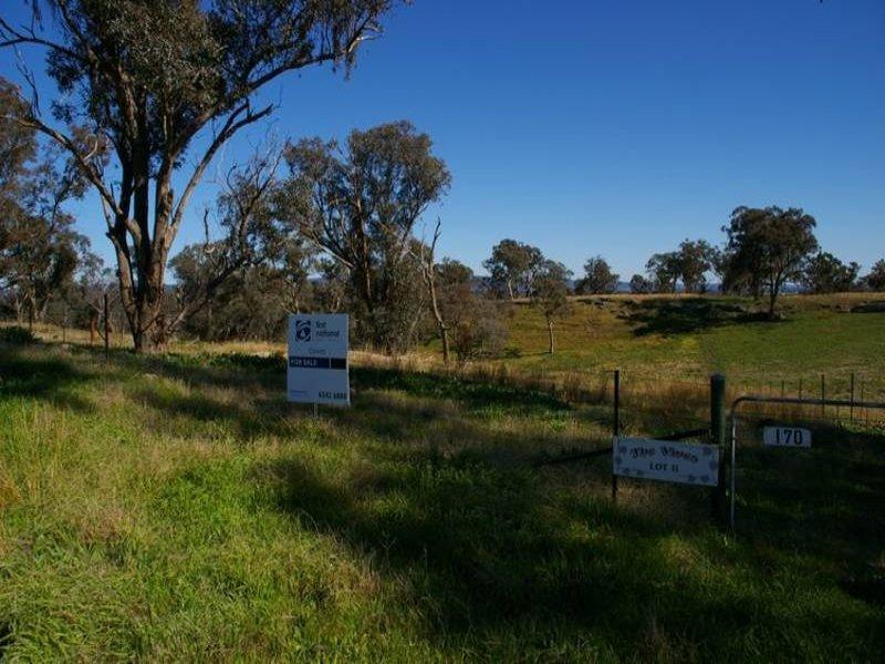 170 Cultowa Lane, Billimari, NSW 2804