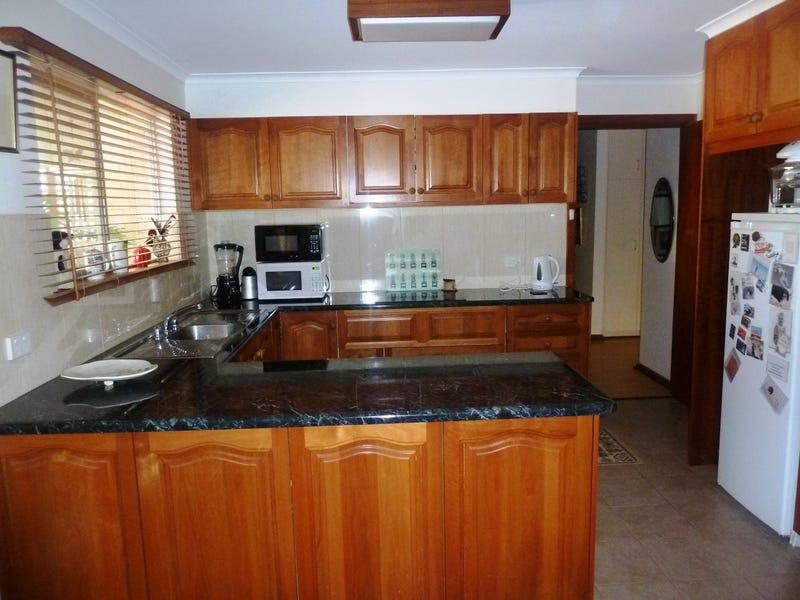 17 Haines Street, Wudinna, SA 5652
