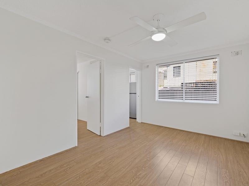 3/41 Gottenham Street, Glebe, NSW 2037