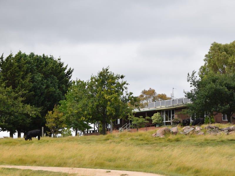 1259 Black Swamp Road, Tenterfield, NSW 2372