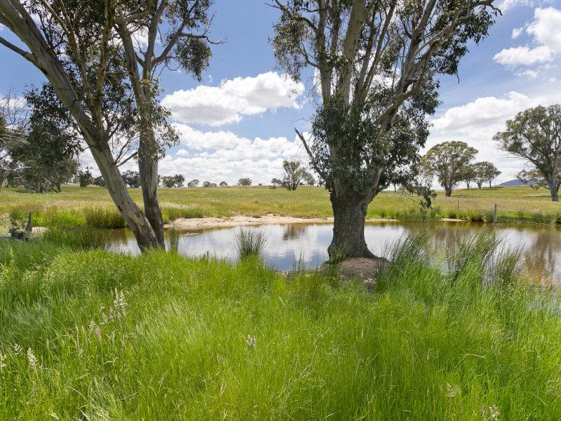 368 Wallaroo Road, Wallaroo, NSW 2618