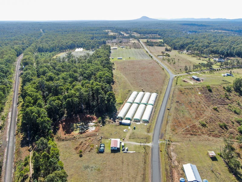 768 Parker Road, Wells Crossing, NSW 2460