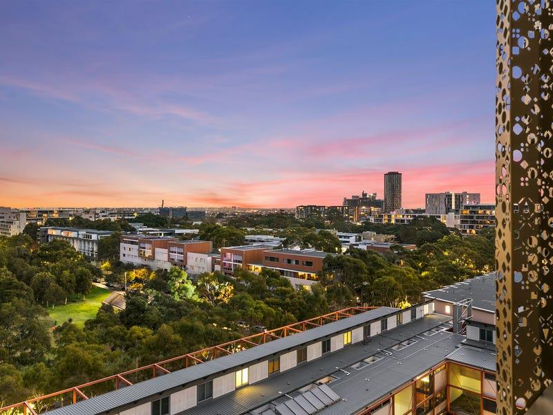 804/17 Gadigal Avenue, Zetland, NSW 2017