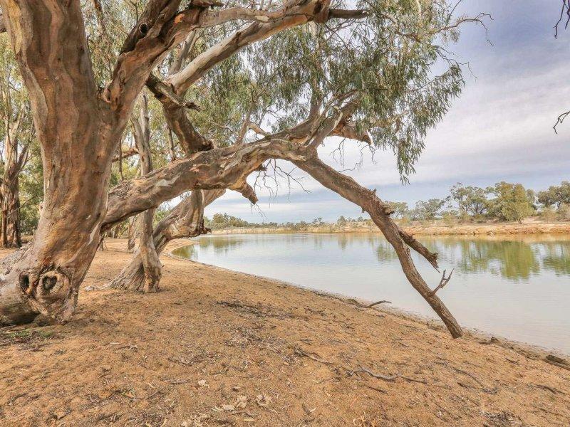 LOT 1221 Boeill Creek Road, Boeill Creek, NSW 2739