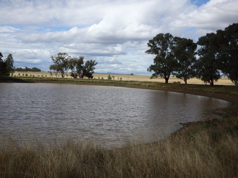Bithramere Farm, Tamworth, NSW 2340