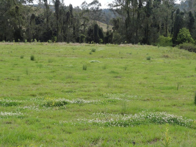123 Iron Pot Creek Road, Kyogle, NSW 2474