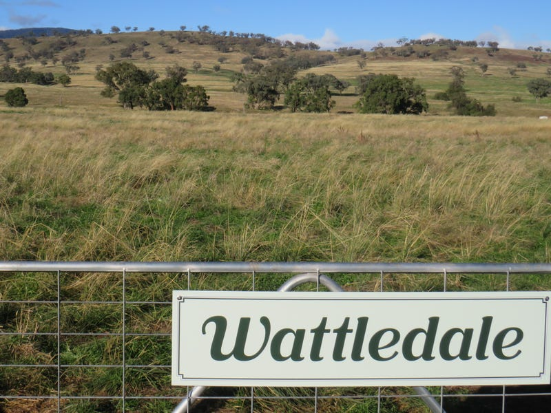 Wattledale 877 Swinging Ridges Road, Warrah Creek, NSW 2339