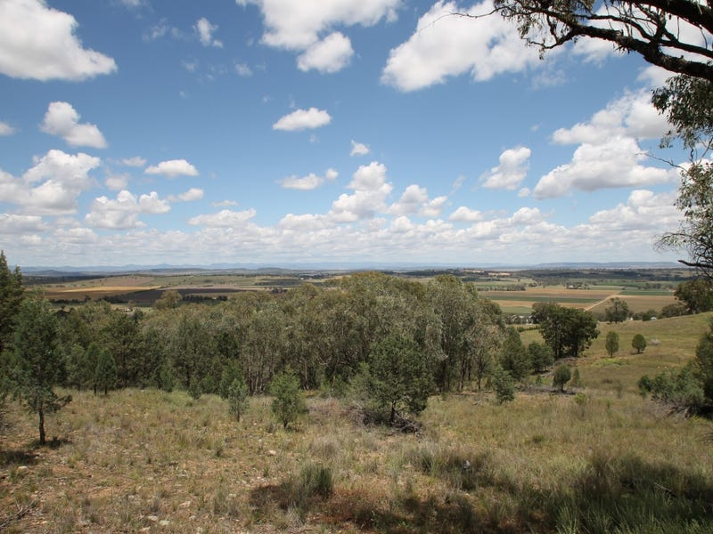 53 Ray Carter Drive, Quirindi, NSW 2343