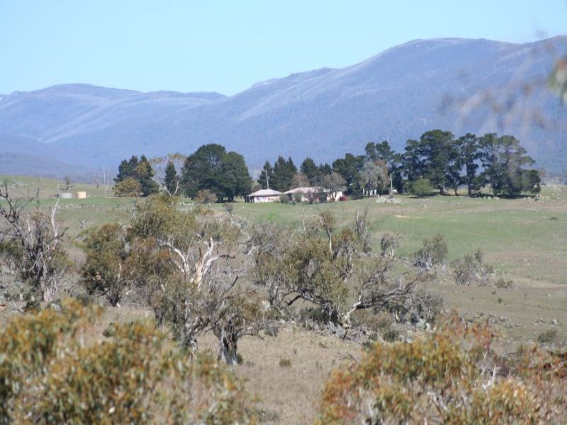 LYNWOOD HOMESTEAD, Moonbah, NSW 2627