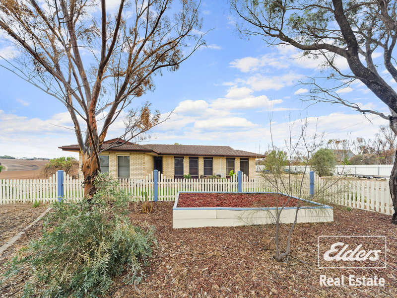 20 Albert Street, Hamley Bridge, SA 5401