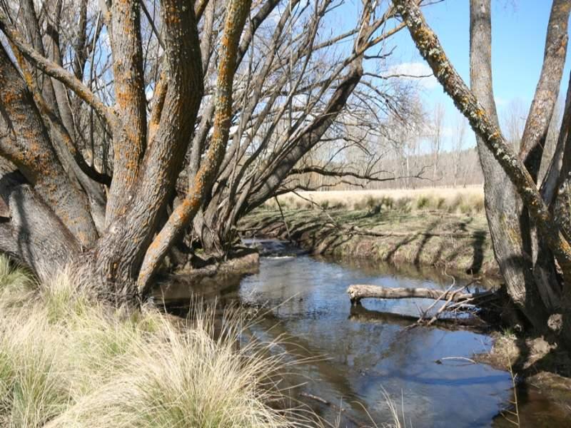 523 Campbells River Road, Black Springs, NSW 2787