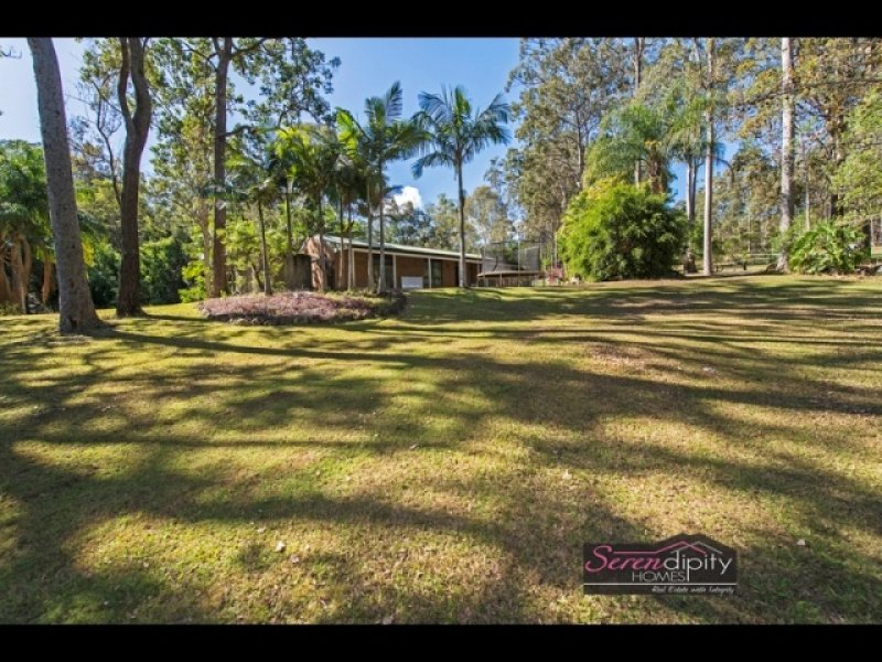 64 Murray Grey Drive, Tamborine, Qld 4270