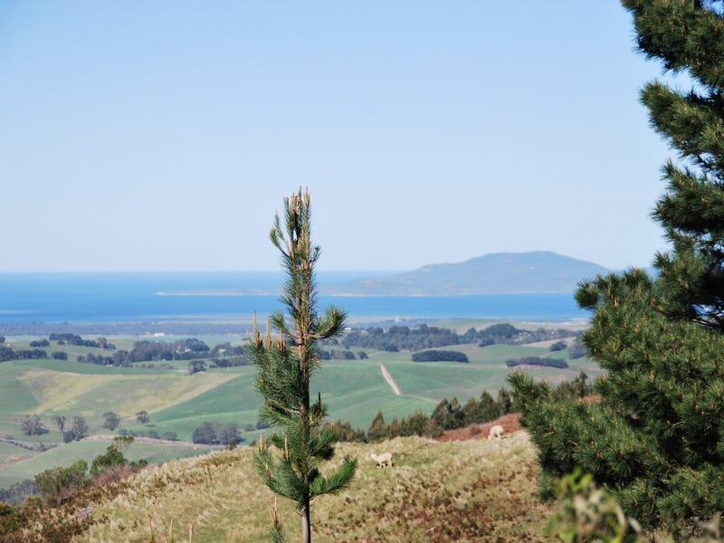 178 Mount Best- Tin Mine Rd, Toora North