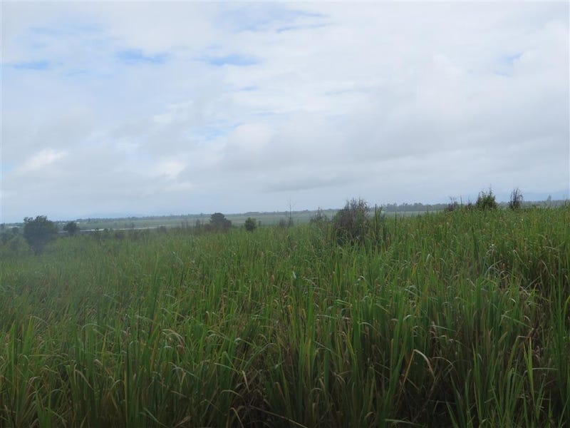 Lot 3 Silky Oak Road, Silky Oak, Qld 4854