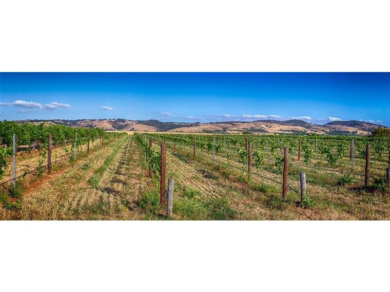 9 Barossa Valley Way, Tanunda, SA 5352