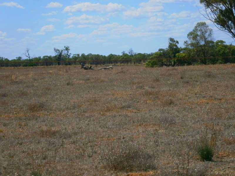Lot 39 McKay Road, Blanchetown, SA 5357