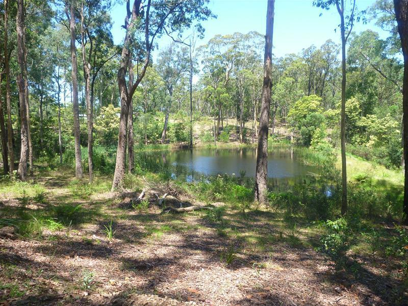 Lot 5, Lot 5 Princes Highway, Bimbimbie, NSW 2536