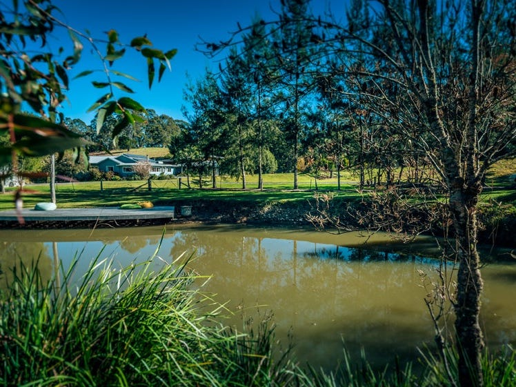 35 Wards Road, Dorrigo, NSW 2453