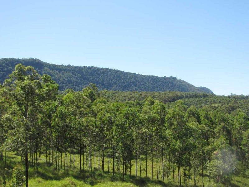- Amos 256 Haystack Road, Haystack, NSW 2469