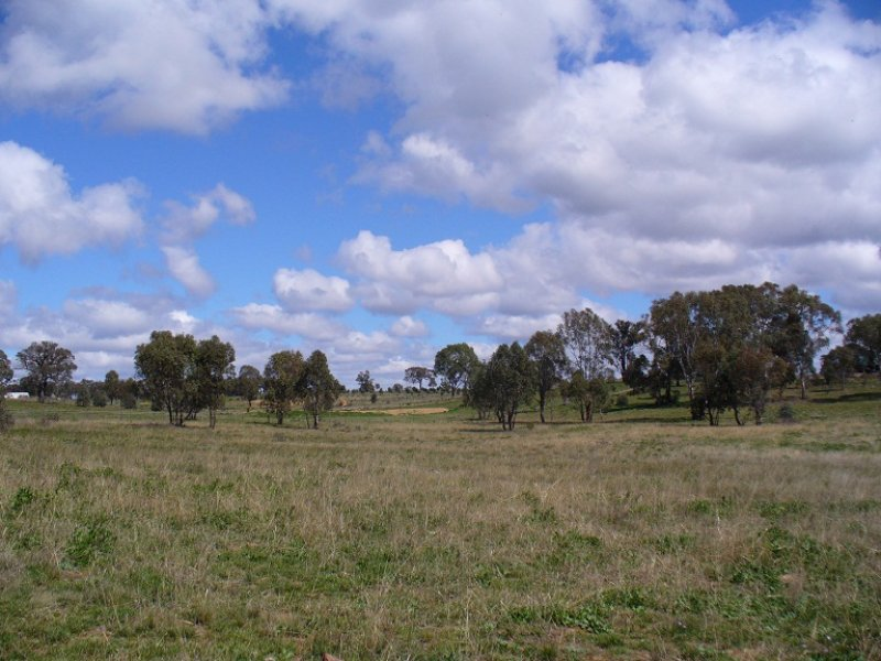 Lot 32, 119 Acacia Drive, Rylstone, NSW 2849