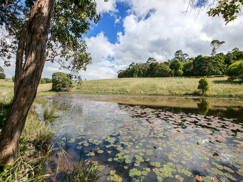687 Coles Creek Road, Cooran, Qld 4569