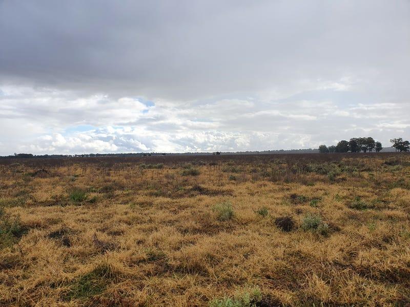 Part Springfield, Gilgandra, NSW 2827