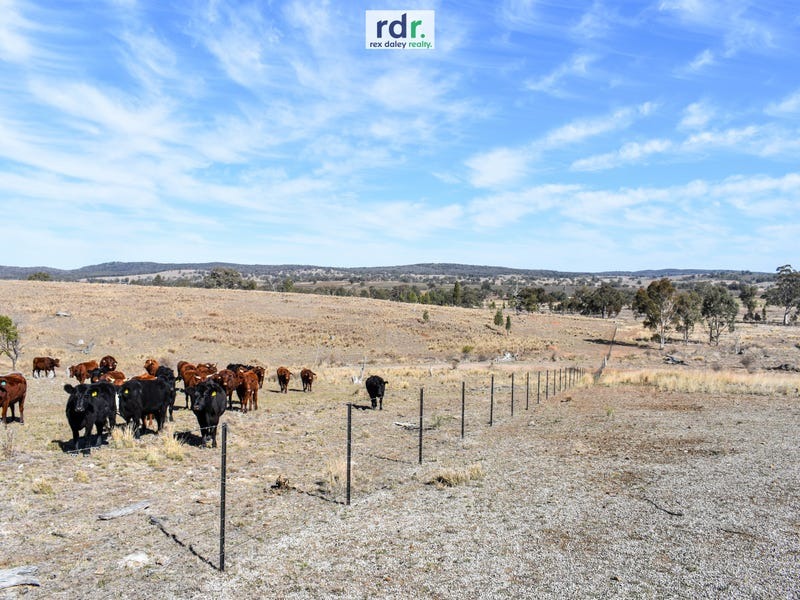 1730 Rocky Creek Road, Emmaville, NSW 2371