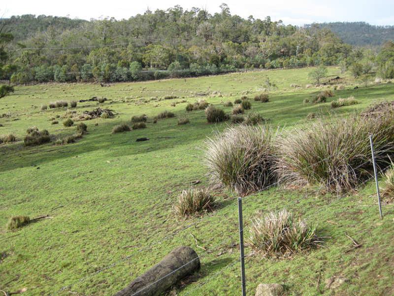 Tasman Highway, Buckland, Tas 7190