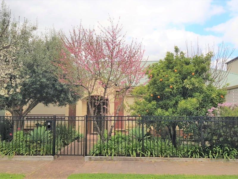 7 Peter Avenue, Campbelltown, SA 5074