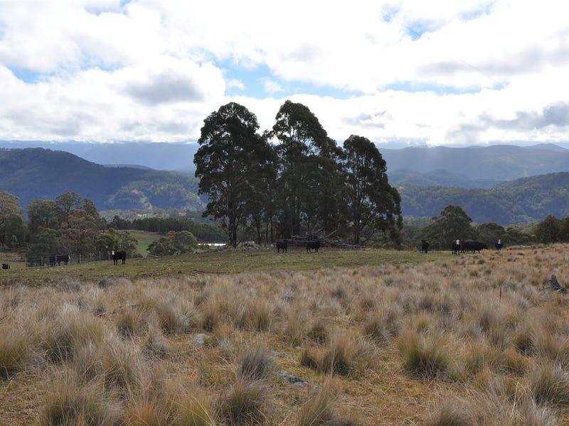 . 'Pete's Ridge', Tomalla Rd, Barrington Tops, NSW 2422