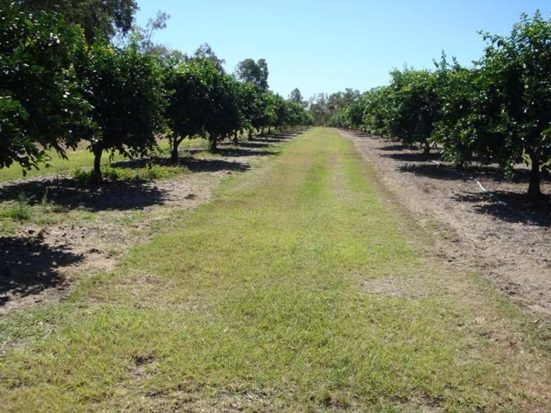 Lot 21 Burke Development Road, Dimbulah, Qld 4872