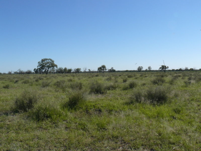 Address available on request, Mungindi, NSW 2406