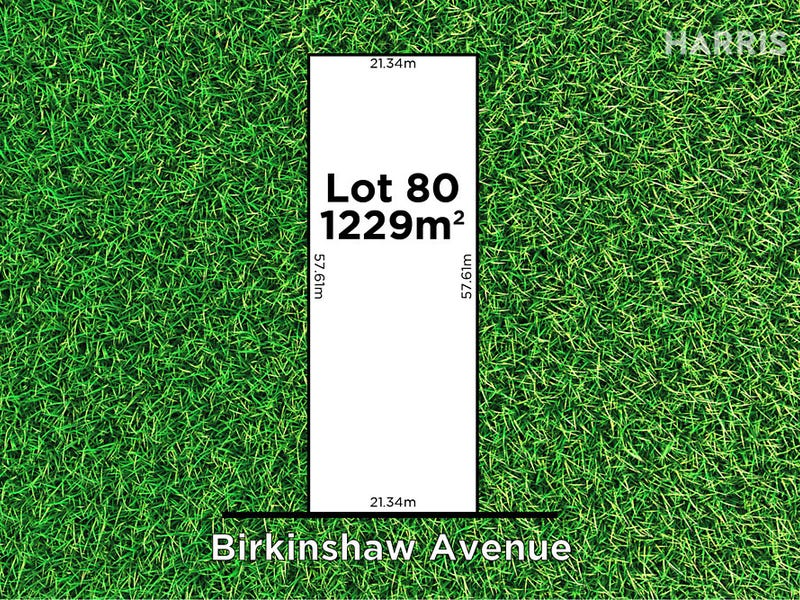 42 Birkinshaw Avenue, Tranmere, SA 5073