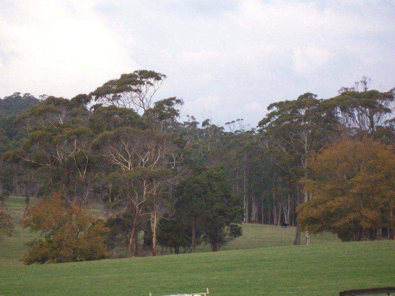 90 Douglas Road, Lefroy, Tas 7252