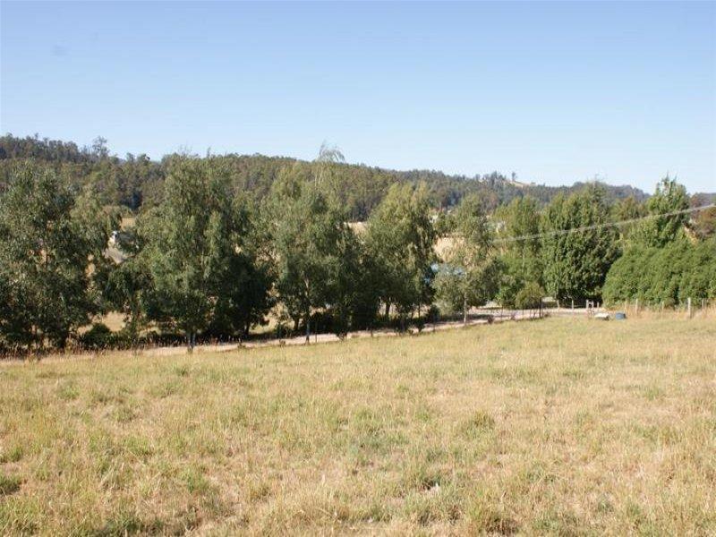 20A McNeil Street, Mole Creek, Tas 7304