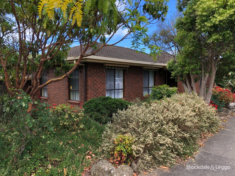 43 Larcombe St, Highton, Vic 3216