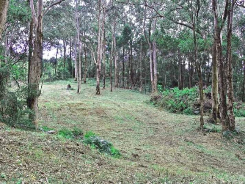 Lot 2 Figtree Close, Surf Beach, NSW 2536