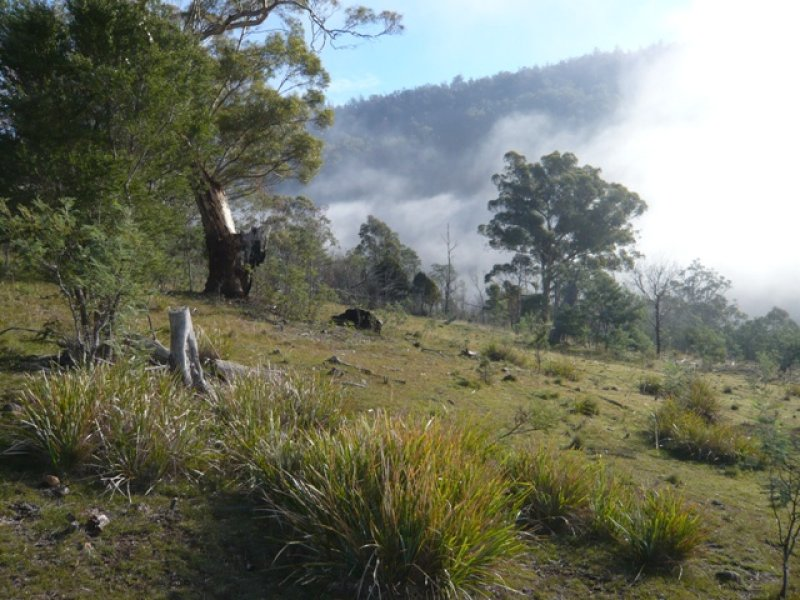Lot 1, Plenty Valley Road, Upper Plenty, Tas 7140