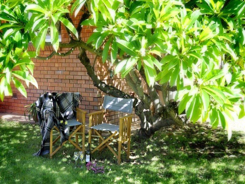 22 Abbott Street, Gunnedah, NSW 2380