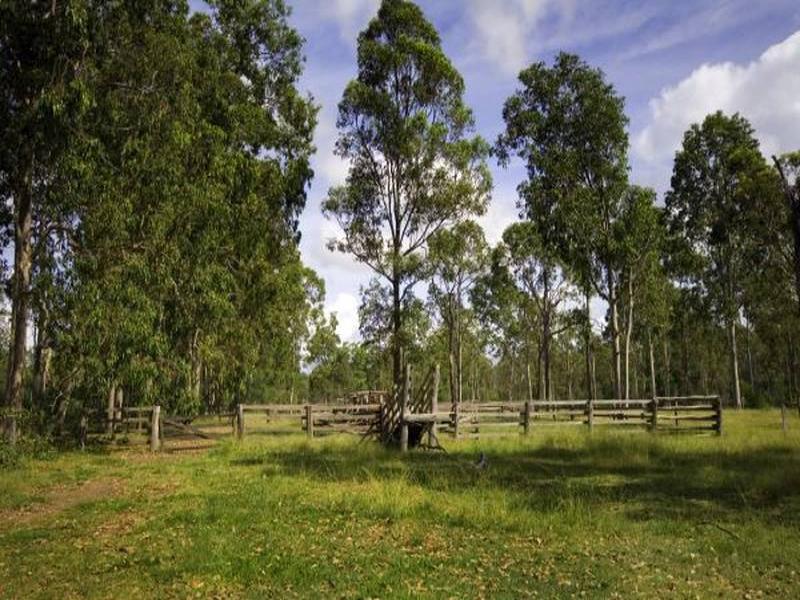 110 Shorts Lane, Lower Southgate, NSW 2460