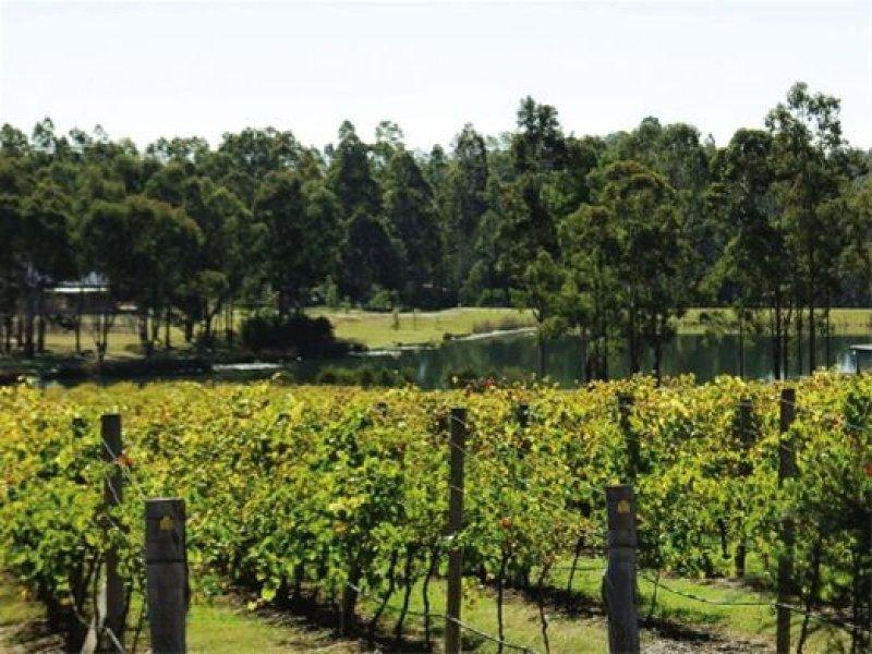 Lot 81 Peppertree Lane, Pokolbin, NSW 2320