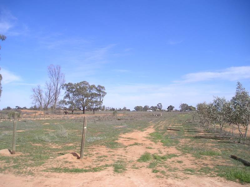 Lot 1 Box Avenue, Koorlong, Vic 3501