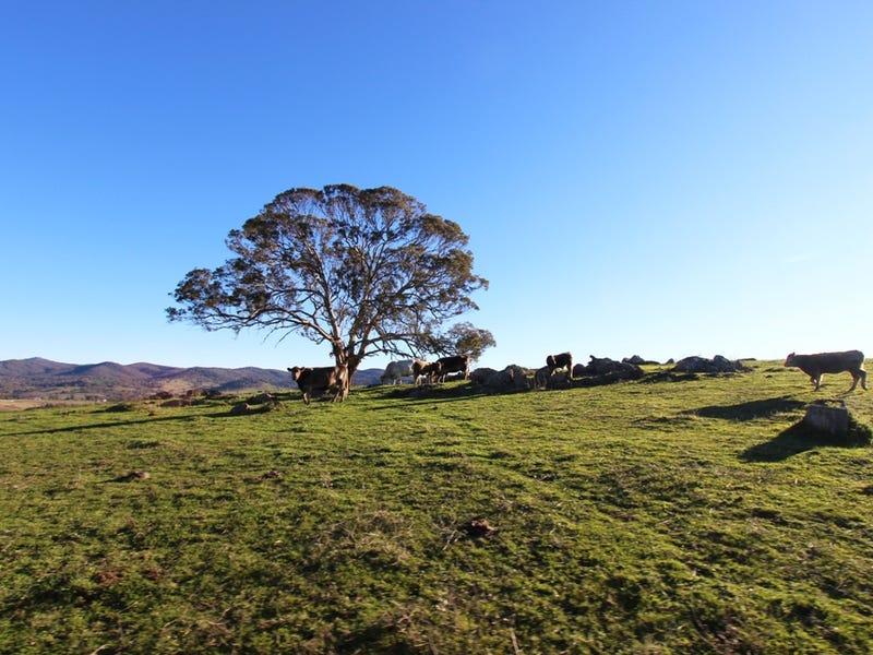 2216 McIntosh Road, Freemantle, NSW 2795
