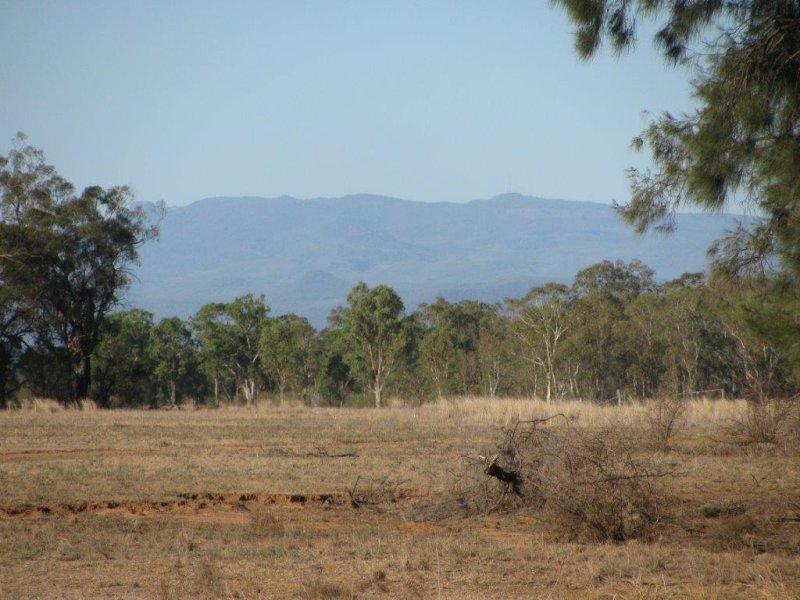 001 Baan Baa, Baan Baa, NSW 2390
