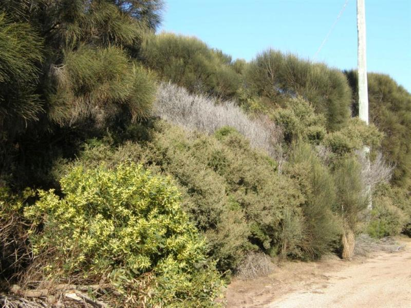 Lot 35 Long Beach Road, Cape Barren Island, Tas 7257